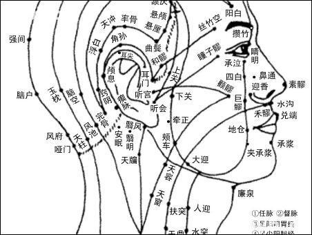 上廉泉-体表示意图
