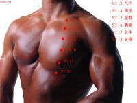 乳中-体表示意图