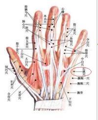 后溪-解剖图