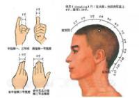 承灵-体表示意图