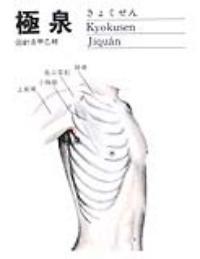 极泉-解剖图