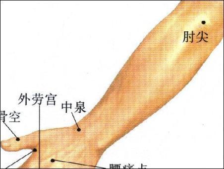 肘尖-体表示意图
