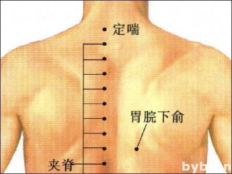 胃脘下俞-体表示意图