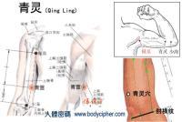 青灵-解剖图